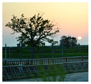 Couché de soleil sur le port d'Audenge...